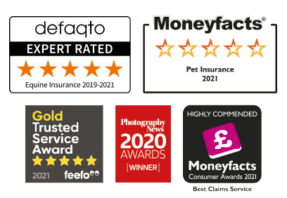 A collection of images showing the awards that The Insurance Emporium has won