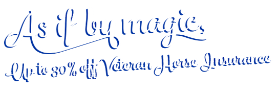 Up to 30% off Veteran Horse Insurance
