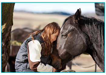 How to bond with your horse