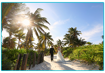 How to plan your wedding abroad on a budget - couple walking off along palm tree-lined path