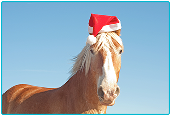 Golden horse wearing Christmas hat.