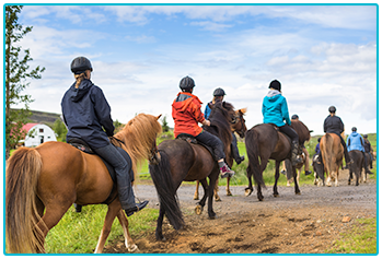 Am I too old to learn to ride a horse? - group riding lesson outside.