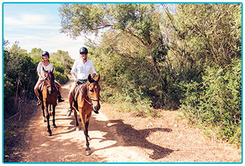 Am I too old to learn to ride a horse? - Two horse riders hacking