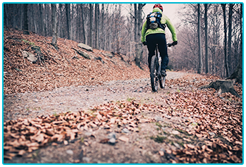 Winter cycling - cycling through fallen leaves